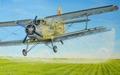 Десять интересных фактов о  кукурузнике  - легенде советской авиации