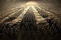 Тайна терракотовой армии. Зачем император создал 8000 глиняных копий людей?