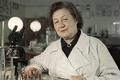 Изобретение из Соловков. Как в СССР создавали первые антибиотики