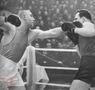 Николай Королев: король бокса и солдат Отечества